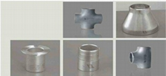 Duplex Stainless Pipe Fitting