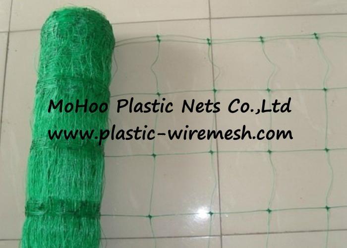climbing plant support net&mesh pea&bean net&mesh  flower net&mesh(factory) 2