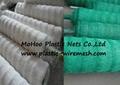 climbing plant support net&mesh pea&bean net&mesh  flower net&mesh(factory) 5
