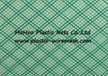 plastic resin infusion net&mesh plastic