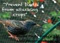 BOP anti bird net&mesh fruit&garden