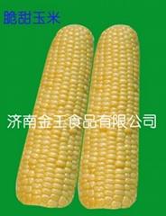 速凍脆甜玉米