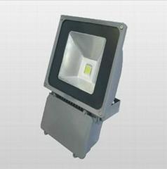 LED Flood Lighting 30W 50W