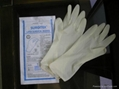 latex  surgical  gloves 2