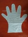 Disposable TPE Gloves 1