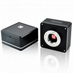 5.0mp CCD microscope camera