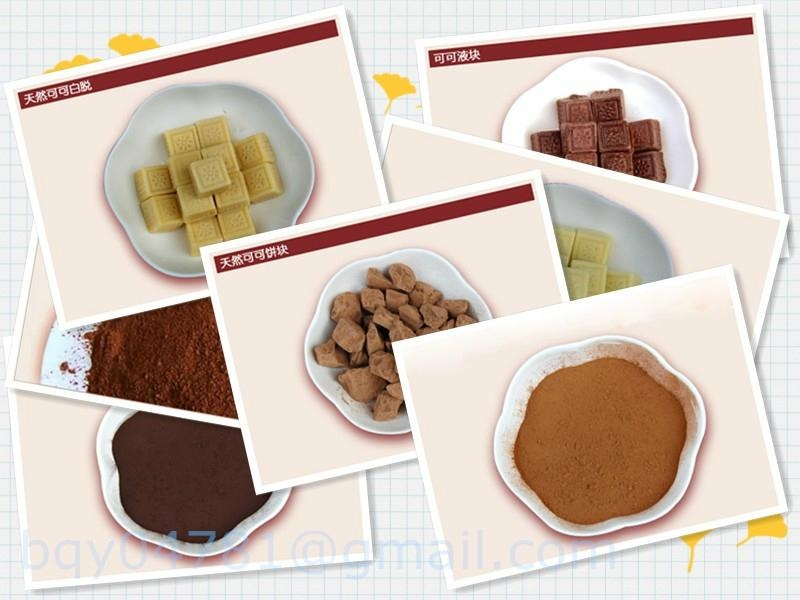 Sell Alkalized Cocoa Powder 10/12 fat 2