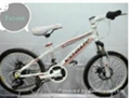 2013 Cool Children Bicycle (2013X-1)