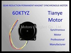 Micro Motor 59TYZ RATED VOLTAGE 220V 110V