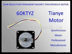 Geared Motor TYD-59 SPEED CUSTOMIZED