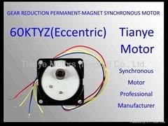 TYD60 Pmsm Eccentric Shaft