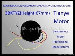 Low RPM Motor 3BTYD SPECIAL 60 MOTOR SPEED CUSTOMIZED