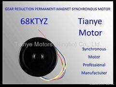 Single Phase Motor 68TYD SPEED CUSTOMIZED
