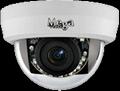 Indoor Antiriot IR IP Dome Camera
