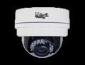 Indoor IR Dome IP camera