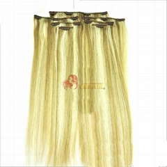 5A Brazilian Silky Straight Clip In Hair Extentions