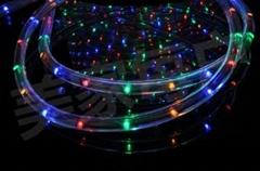 彩虹管圆二线灯条