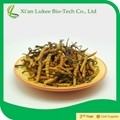 Cordyceps Sinensis Extract with