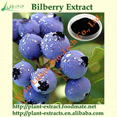 Natural Bilberry Extract Powder Anthocyanidins Proanthocyanidins
