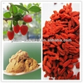 most competitive price 100% natural