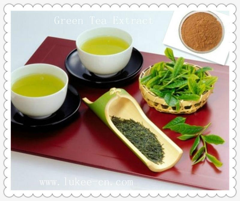 100% Pure Natural Polyphenols Green Tea Extract  1