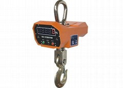single sided direct-viewing electronic crane scale