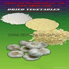 2013 dehydrated garlic g