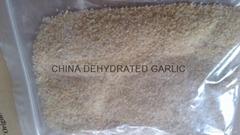 dried garlic granules 2013 new crop the first grade
