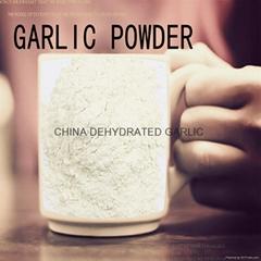 dried garlic powder dehy