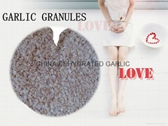 bulk dehydrated garlic granules in spices for sale
