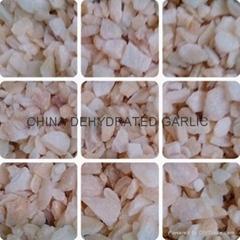 2013 Chinese Garlic gran