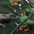 Plastic Anti-Bird Mesh / Bird Net  3
