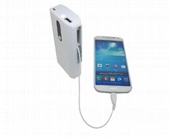 Universal Power Bank with  8000mAh ( HP1380)