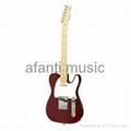 TL electric guitar
