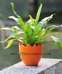 fashion flower pot