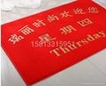PVC塑料喷丝电梯地毯