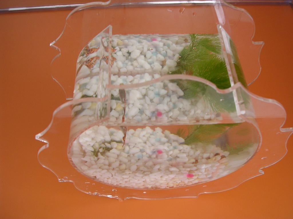 New Design Acrylic Fish Tank 1