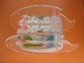 New Design Acrylic Fish Tank 3