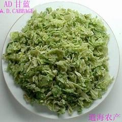 AD甘蓝cabbage