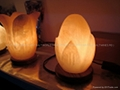 Fancy Salt Lamp 09
