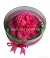 太阳花形香皂花