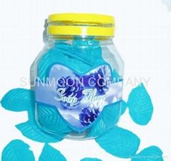 树叶香皂花/花瓣入塑料瓶