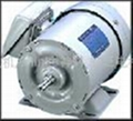 Fuji three-phase induction motor