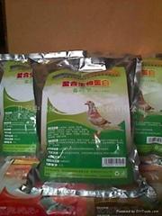 赛鸽生物蛋白饲料