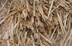 Pine kindling & splinters & firewood