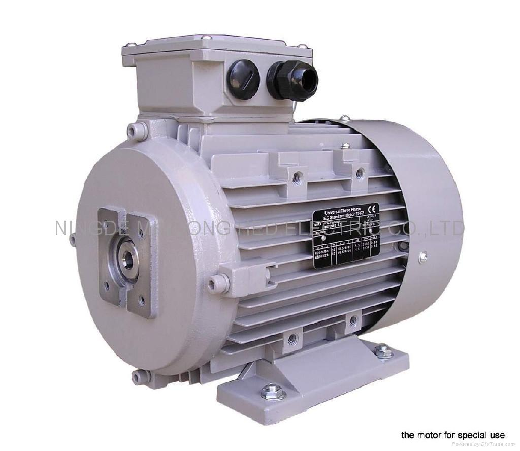 Electric motor ms hed china manufacturer motors for Chinese electric motor manufacturers