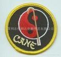 跆拳道、实名章、布标、商标、徽