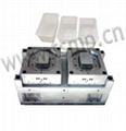 produce  Injection Mould