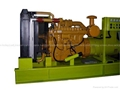 Chinese Caterpillar genset