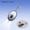 solar LED key chain light